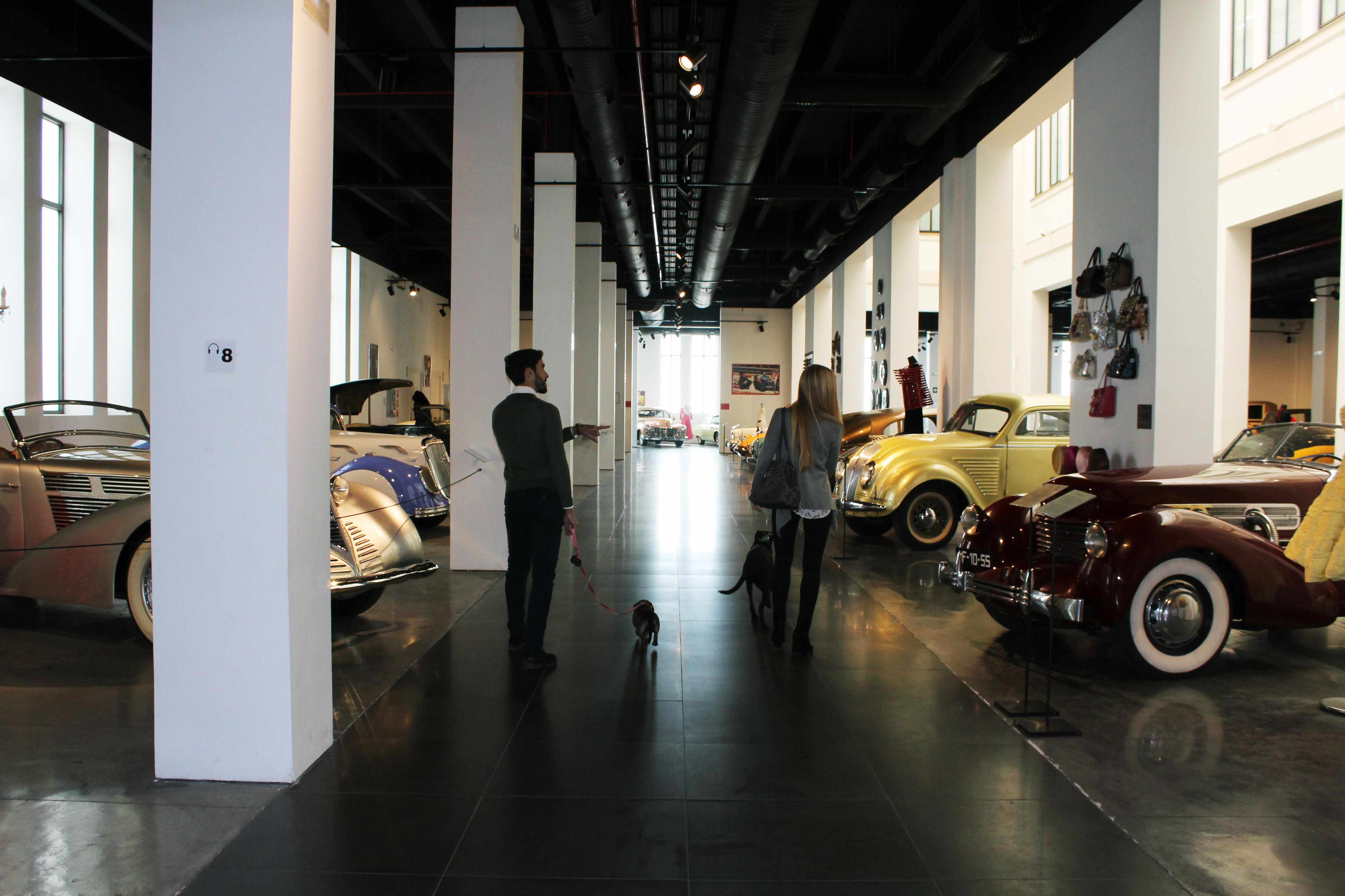 El Museo Automovilístico y de la Moda amplía su horario de lunes a domingo e implanta el Día Petfriendly